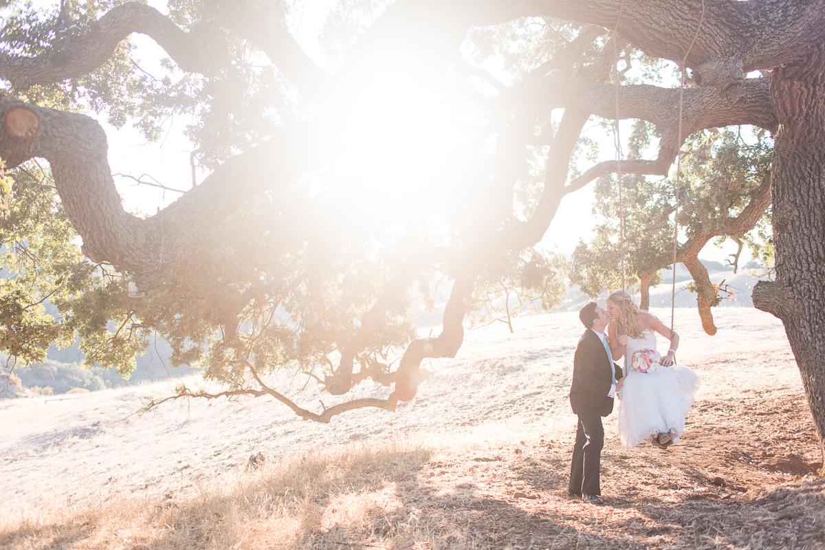 Walnut Creek wedding - bride in tree swing