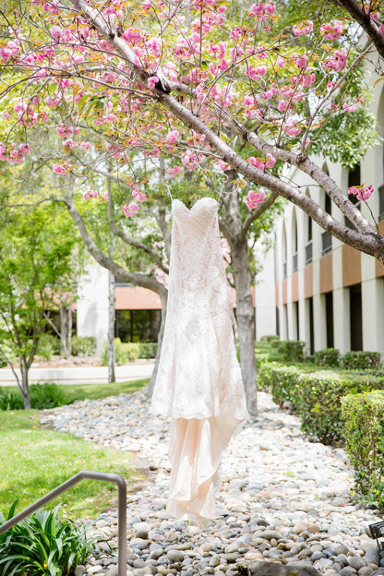 Hellen's wedding dress hanging from tree with pink flowers